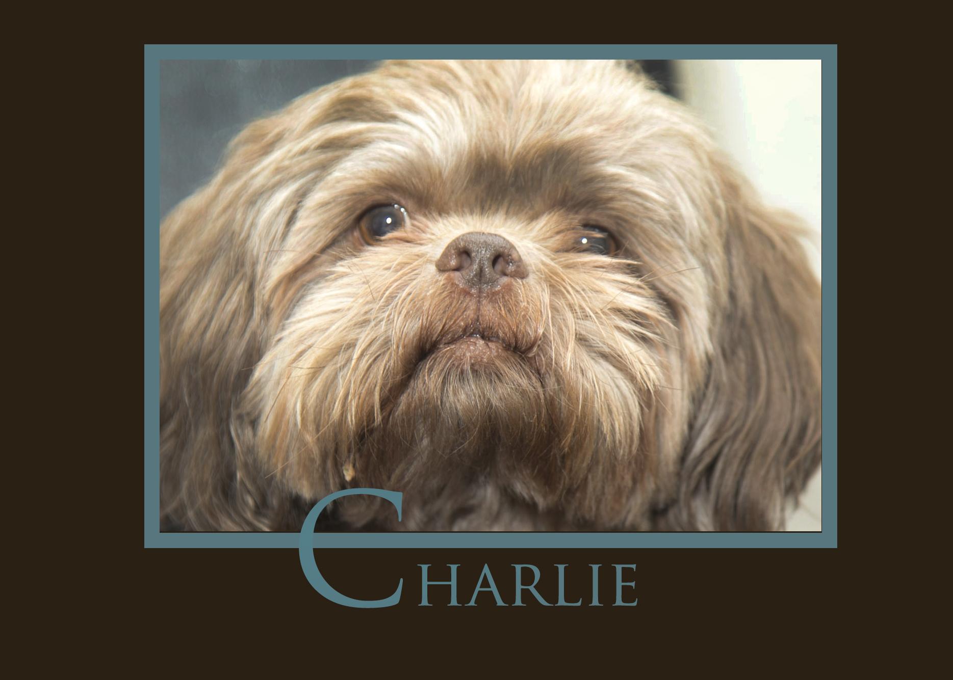 Charlie Botfeld